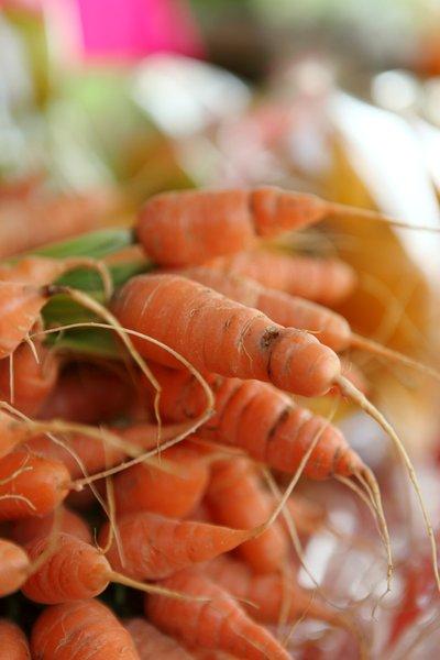 wortelsalade - basishulp